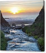 End Of The Road - Creek Runs Into Pacific Ocean At Big Sur Canvas Print