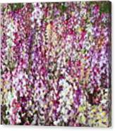 Endless Field Of Flowers Canvas Print