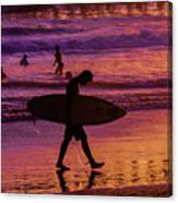 Endless Summer 2 Canvas Print