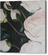 Englische Rosen Canvas Print