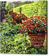 English Flower Pots Canvas Print