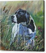 English Pointer In The Field Canvas Print
