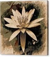 Enlightenment Canvas Print