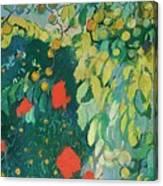 Enmarcado Por Grandes Canvas Print