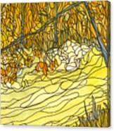 Eno River #25 Canvas Print