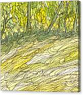 Eno River 34 Canvas Print