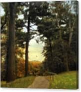 Enter Autumn Canvas Print