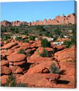 Entrada Sandstone Formations - Arches National Park Canvas Print