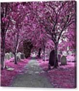 Entrance To A Cemetery Canvas Print