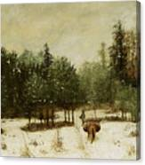 Entrance To The Forest In Winter Canvas Print