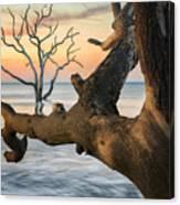 Charleston South Carolina Boneyard Beach Sunrise Scene  Canvas Print