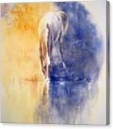 Equanimity Canvas Print