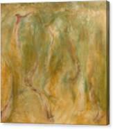Equos Canvas Print