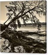 Erosion - Anselized Canvas Print