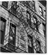 Escape Ladders  Canvas Print