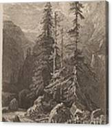 Essais De Gravure ? L'eau Forte Par Alexandre Calame, I, Pl. 21 Canvas Print