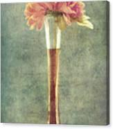Estillo Vintage Textured Canvas Print