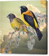 Ethereal Birds On Snowy Branch Canvas Print