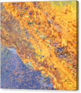 Ethereal Rust Canvas Print