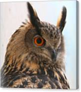 Eurasian Eagle-owl Canvas Print