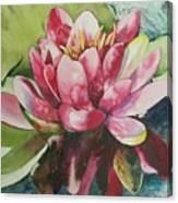 Eureka Springs Lily Canvas Print