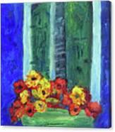 European Window Box Canvas Print