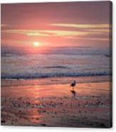 Evening At Cannon Beach Canvas Print