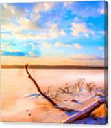 Evening At The Pond Canvas Print