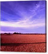 Evening In The Arizona Desert Canvas Print
