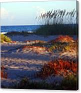 Evening Light At The Beach Canvas Print