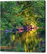 Evening On The Humber River Canvas Print