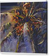 Evening Palm Canvas Print