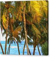 Evening Palms In Trade Winds Canvas Print