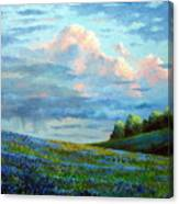 Evening Rain Canvas Print