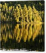 Evening Reflections On Alder Lake Canvas Print