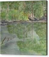 Evening Shadows-oconee State Park Canvas Print