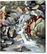 Evening Stream Canvas Print