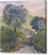 Evening Stroll In Millington Dale Canvas Print