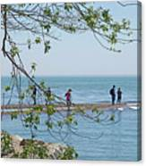 Ever-changing Pelee Canvas Print