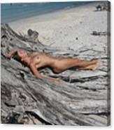 Everglades City Beauty 623 Canvas Print