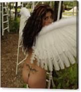 Everglades City Fl. Professional Photographer 4193 Canvas Print