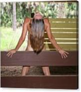 Everglades City Fl. Professional Photographer 817 Canvas Print