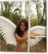 Everglades City Fl.professional Photographer 4190 Canvas Print