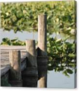 Everglades Pier Canvas Print