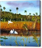 Everglades Sanctuary Canvas Print