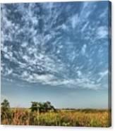 Everglades Sky Canvas Print