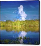 Everglades Smoke Canvas Print