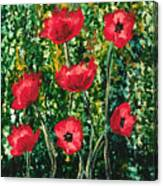 Every Dream Turns Up Poppies Canvas Print
