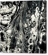 Evil In Black And White Canvas Print