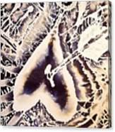 Evol Canvas Print